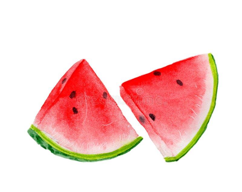 在水彩绘的新鲜水果 免版税库存照片