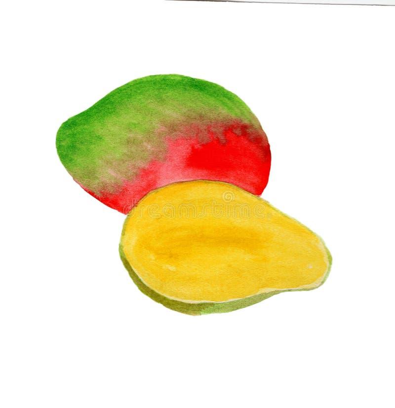 在水彩绘的新鲜水果 免版税库存图片