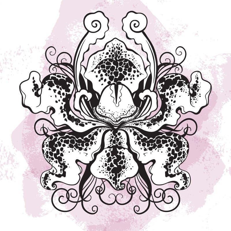 在水彩背景的Beauyiful图表orhid花 传染媒介手拉的漂泊例证 Tattwo艺术,东方主题 库存例证