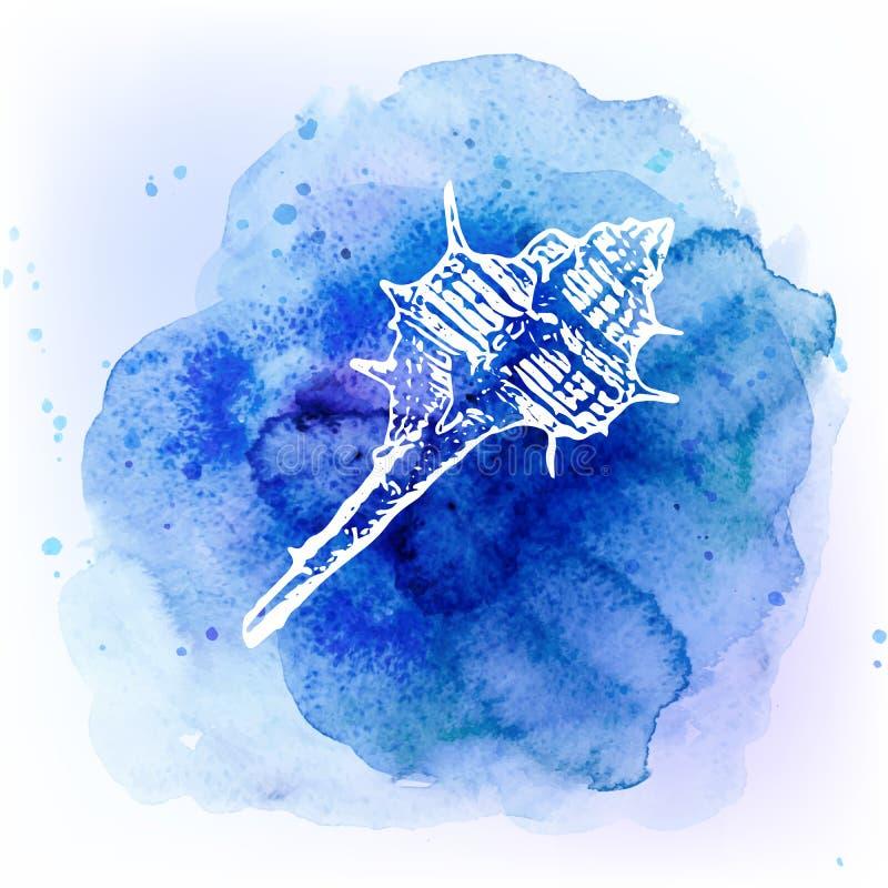 在水彩蓝色背景的贝壳 背景峡湾光芒海运星期日 向量例证