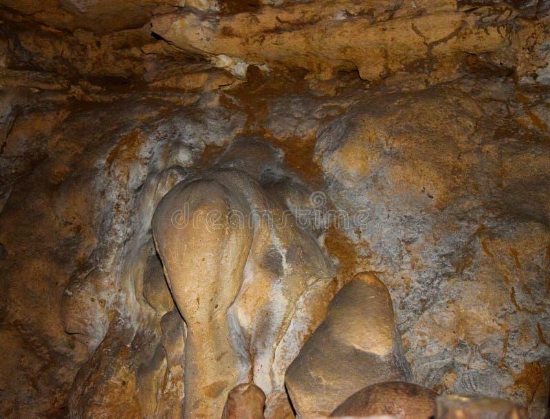 在水成岩的抽象形状在石灰石洞- Baratang海岛,安达曼尼科巴,印度 免版税库存图片