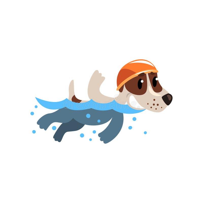 在水池的逗人喜爱的起重器罗素狗运动员游泳,做体育的滑稽的嬉戏爱犬字符导航例证  库存例证