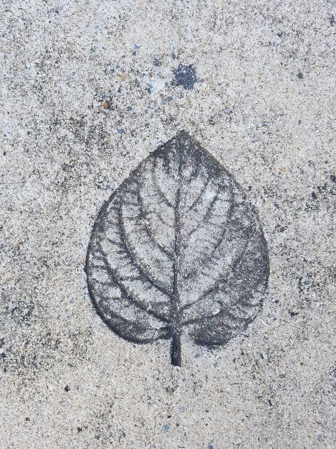 在水泥的版本记录叶子 库存照片