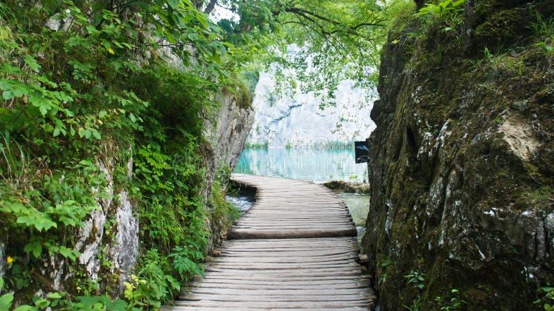 在水的木路在岩石,Plitvice湖在克罗地亚,国立公园之间 免版税库存图片