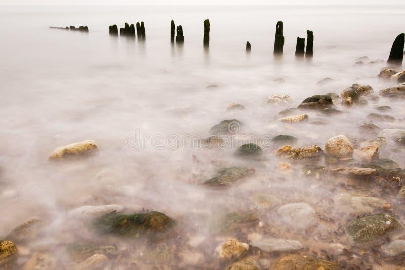 在水的边缘的风景, 免版税库存照片