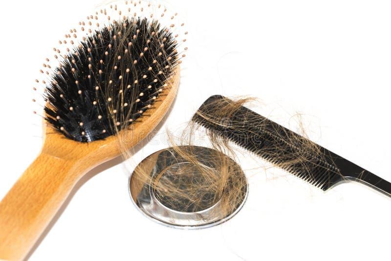 在水盆的掉头发 有黑梳子和木头刷子的长的棕色头发在白色水池在卫生图片