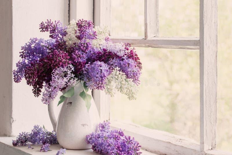 在丁香的背景在老丁香窗台盆景从植水罐图片