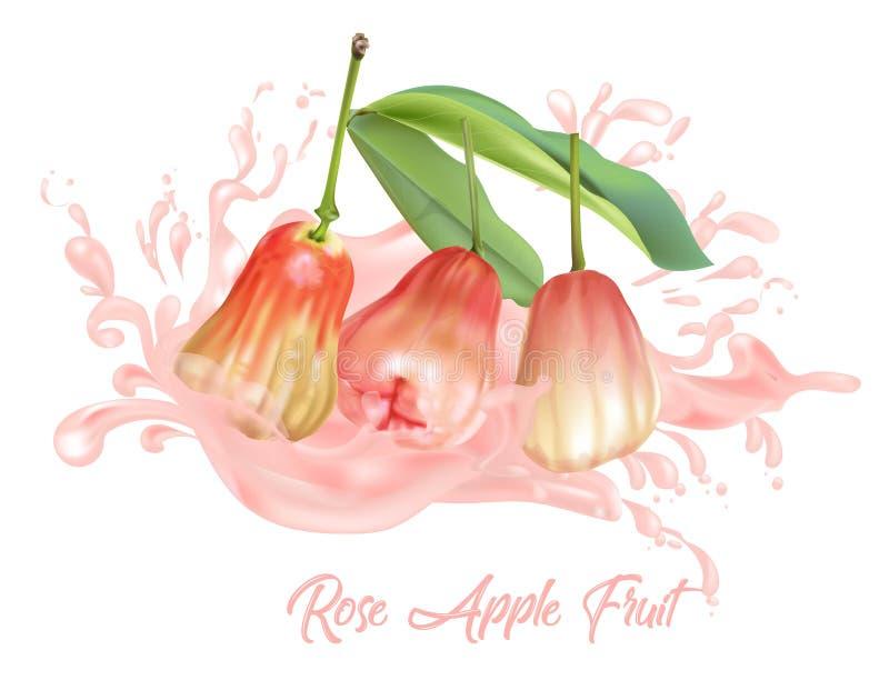 在汁液飞溅桃红色颜色的蒲桃果子 向量例证