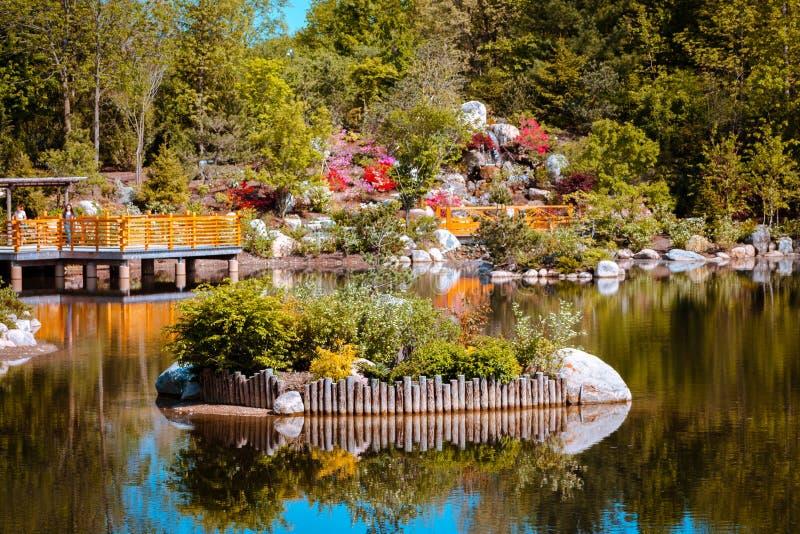 在池塘中间的海岛日本庭院的在大瀑布城密执安在一个晴朗的春日 库存照片