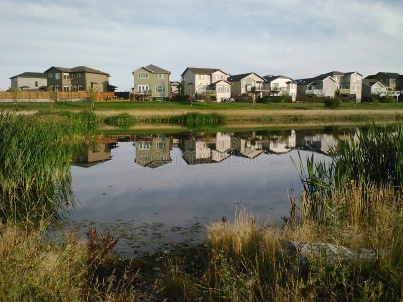 在池塘反映的郊区 免版税图库摄影