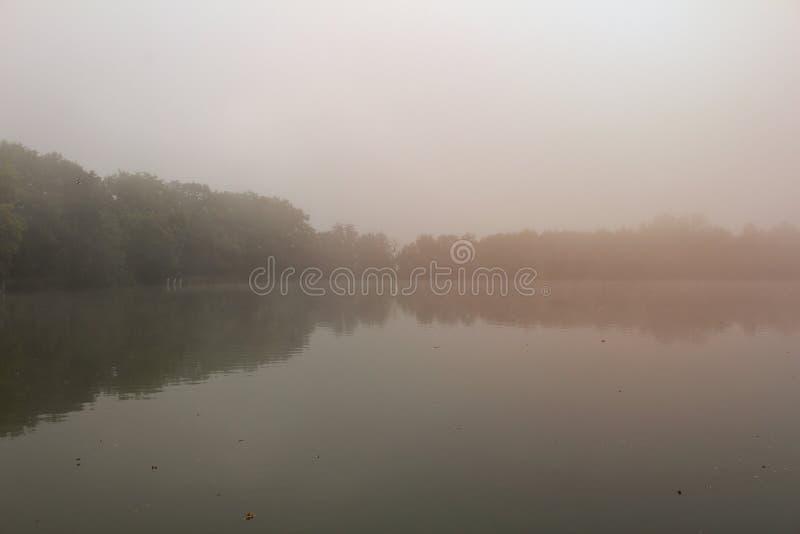在池塘水坝的树在与橙色光,捷克大局的有薄雾的雾 库存图片