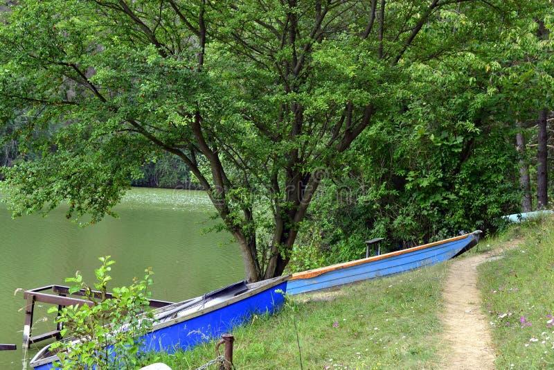 在池塘的岸的小船 库存照片