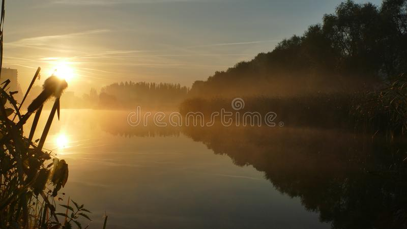在池塘的日出在10月 katowice 波兰 欧洲 免版税图库摄影