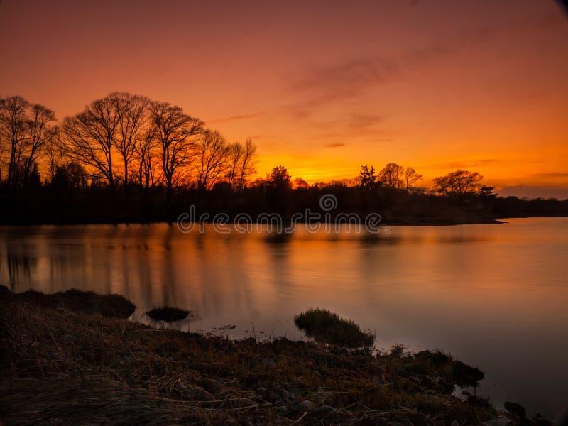 在池塘的日落 免版税库存图片