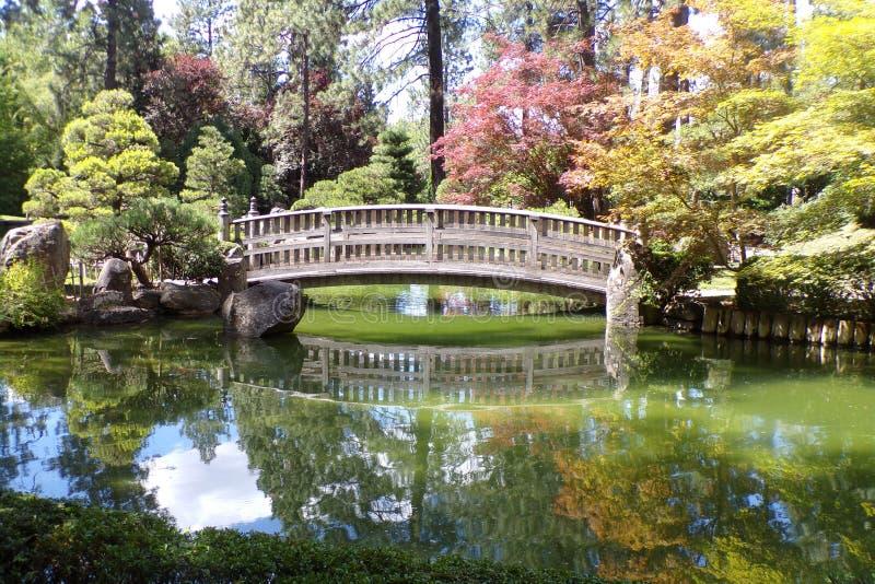 在池塘的桥梁在日本庭院里 库存图片