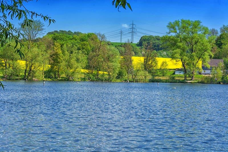 在池塘的美好的夏日 免版税库存图片