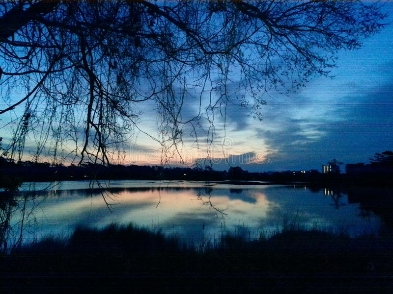在池塘的镜子镜子 免版税库存图片