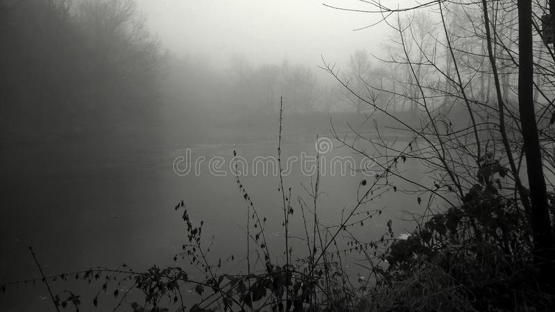 在池塘的雾 免版税库存照片