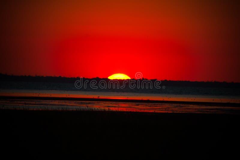 在池塘附近的红色日落 免版税库存图片