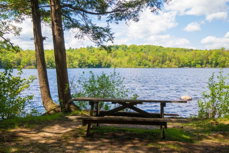 在池塘附近的野餐桌 图库摄影