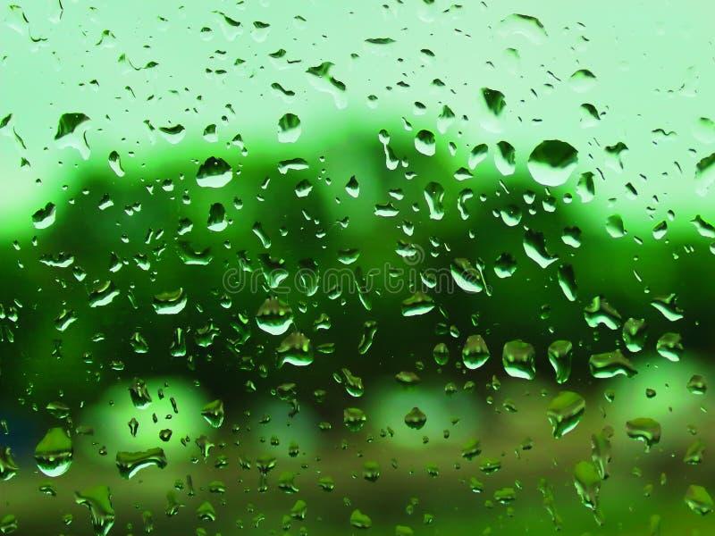在汽车玻璃绿色的雨珠 免版税库存照片
