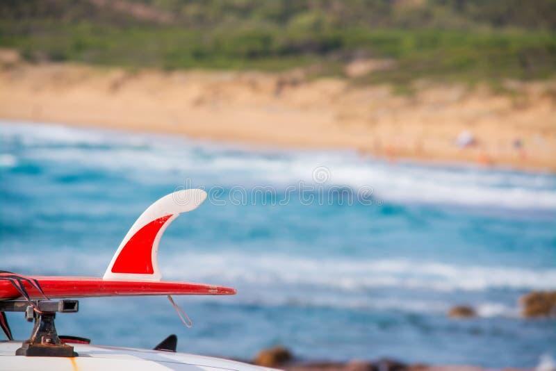 在汽车的红色冲浪板 免版税库存照片