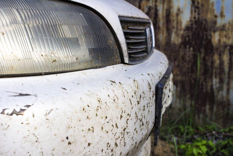 在汽车防撞器和幅射器的被碰撞的昆虫 击碎蚊子和蚋在车的前面 免版税库存图片