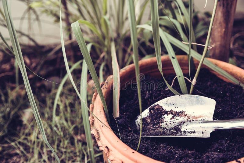 在沃土的园艺工具 图库摄影
