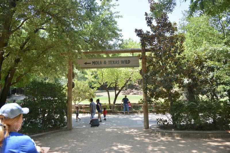 在沃思堡动物园入口的翻车鱼和得克萨斯狂放的地区,沃思堡,得克萨斯 免版税库存照片