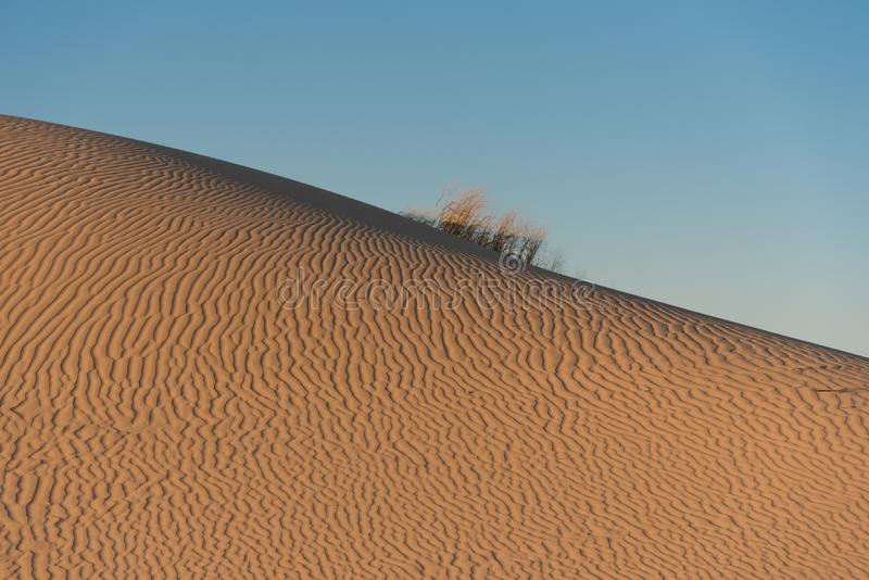 在沙丘的波纹在Monahans Sandhills 库存照片
