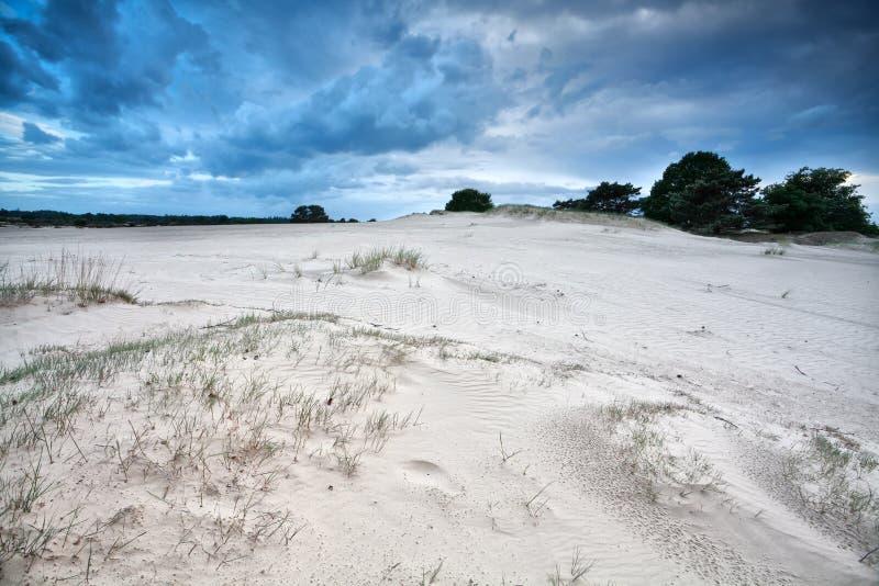 在沙丘的风纹理 库存图片