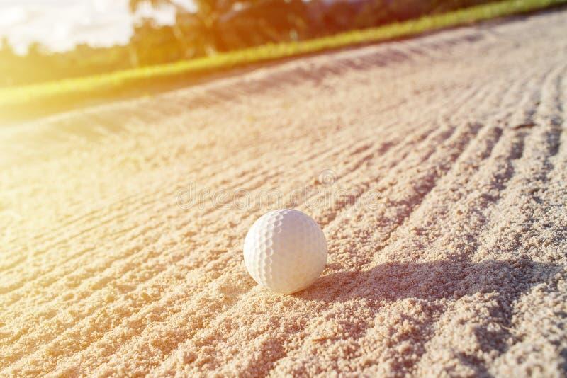 在沙子地堡的选择聚焦白色高尔夫球与绿色fi 免版税库存照片