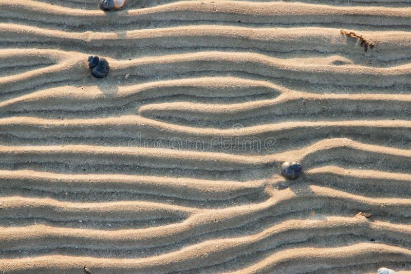 在沙子外面的线 库存图片