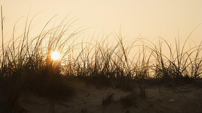 在沙子日落的沙丘 免版税库存照片