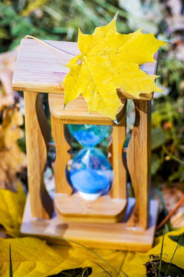 在沙子时钟的黄色枫叶在秋天森林秋天time_ 免版税库存图片