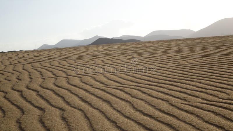 在沙子的样式,停放自然, Corralejo,费埃特文图拉岛,加州 免版税库存图片