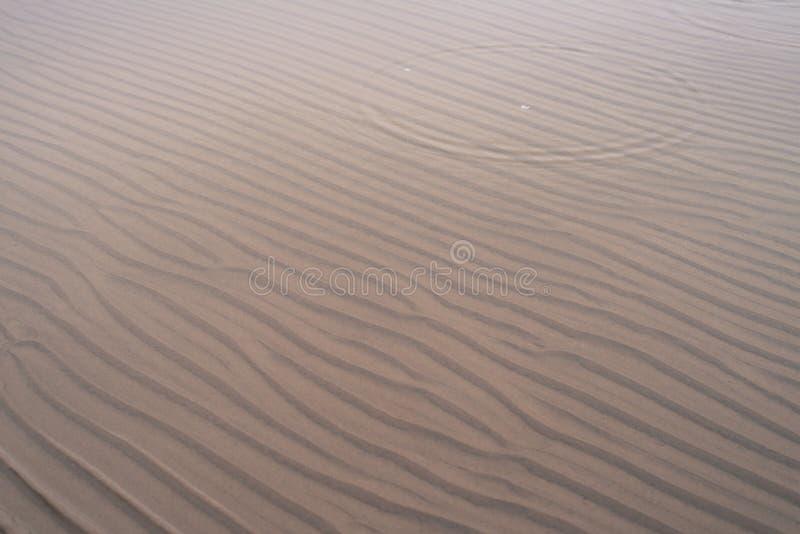 在沙子的波动图式在海滩的浅水区在冬天 免版税库存图片