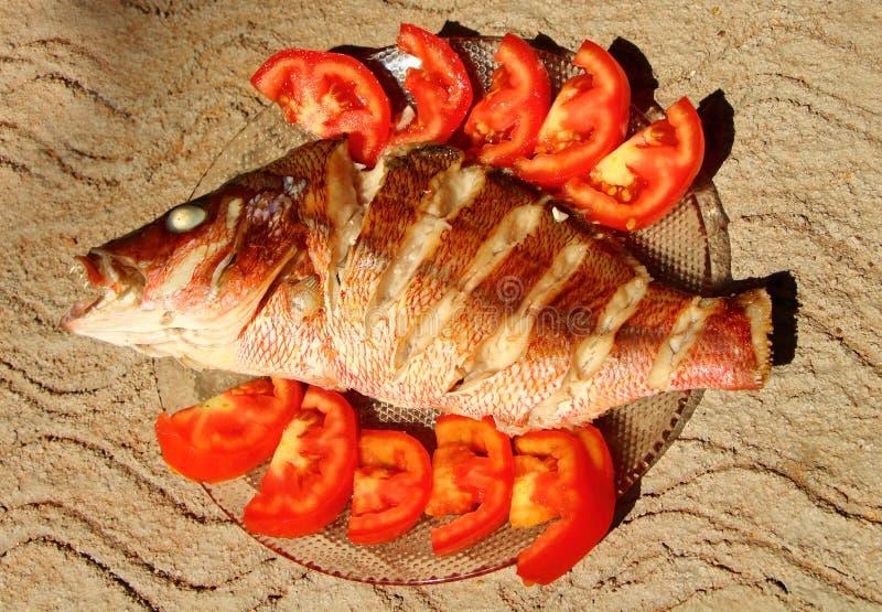 在沙子的烤鲈鱼 家庭烹饪 印度 库存照片