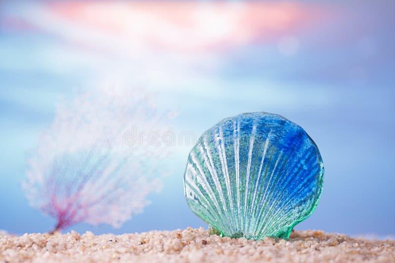 在沙子的热带贝壳海壳与海洋 库存图片