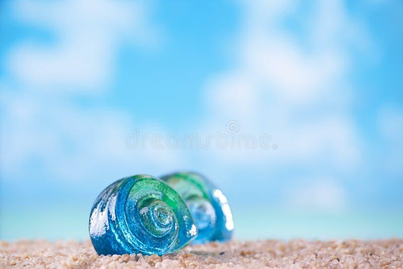在沙子的热带贝壳海壳与海洋 图库摄影