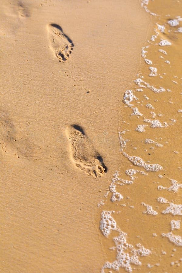 在沙子的脚印在海岸线附近 免版税图库摄影