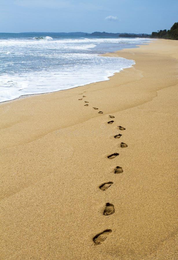 在沙子的脚步用水 库存图片