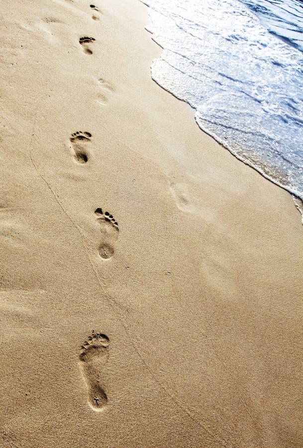 在沙子的脚步 库存照片