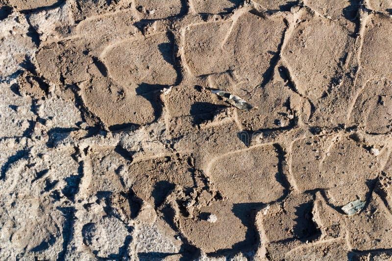 在沙子背景的轮胎轨道 库存照片