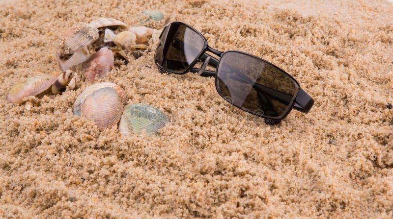 在沙子II的太阳镜 库存图片