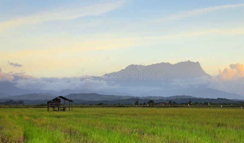 在沙巴,婆罗洲,马来西亚的京那巴鲁山 库存图片
