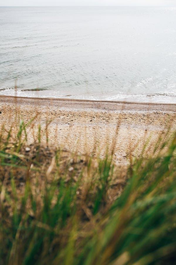 在沙滩的美丽的景色与对海波浪的草 在热带海岛上的海滩海洋海湾或盐水湖的 平静的镇静片刻 免版税库存图片