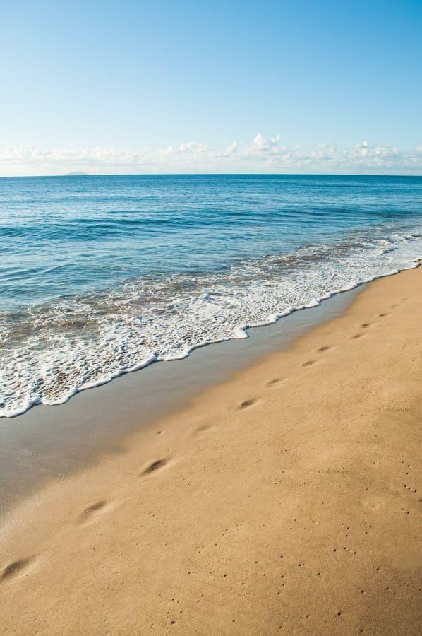 在沙滩的脚步 免版税库存照片