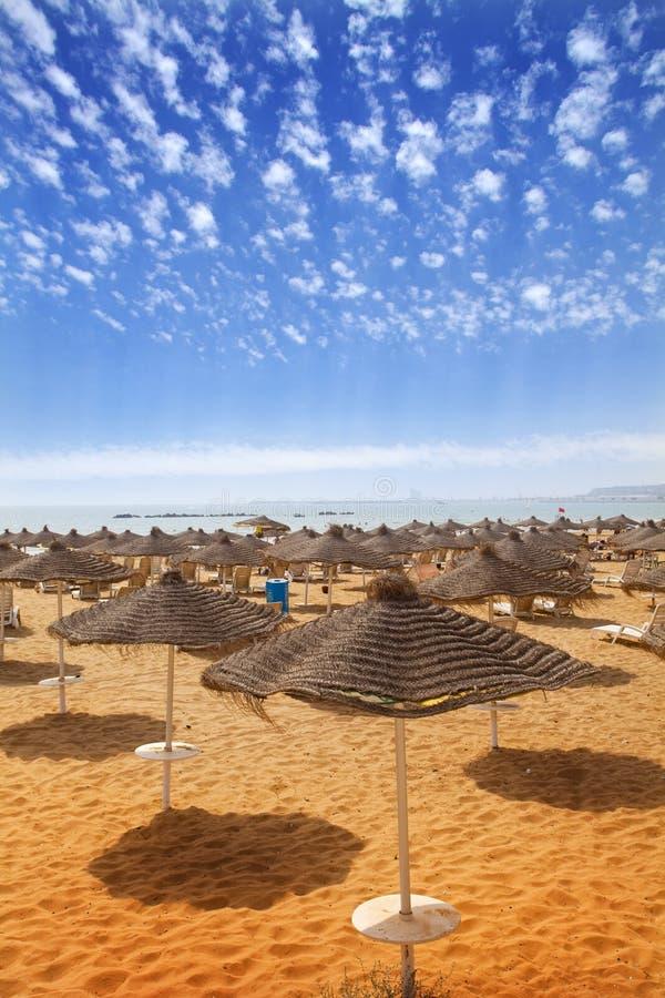 在沙滩的Sunbeds 库存图片