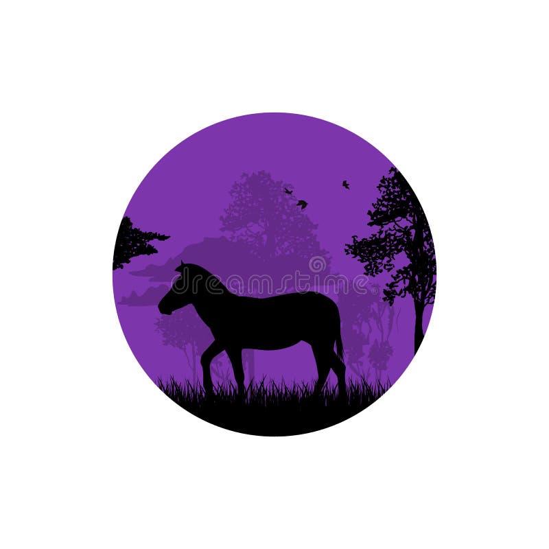 在沙漠导航一头骆驼的剪影的例证 向量例证